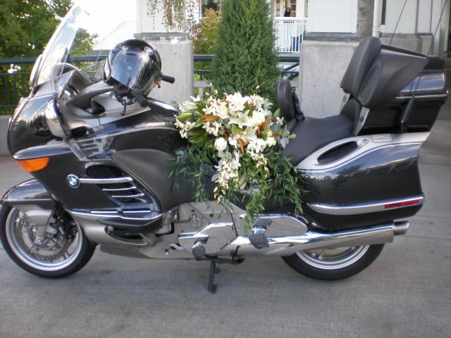 Coni's service-conis-bike.jpg